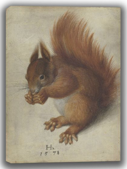 Hofman, Hans: Red Squirrel. Fine Art Canvas. Sizes: A4/A3/A2/A1 (004098)